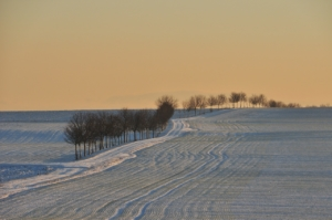 Thermostrumpfhose im Winter
